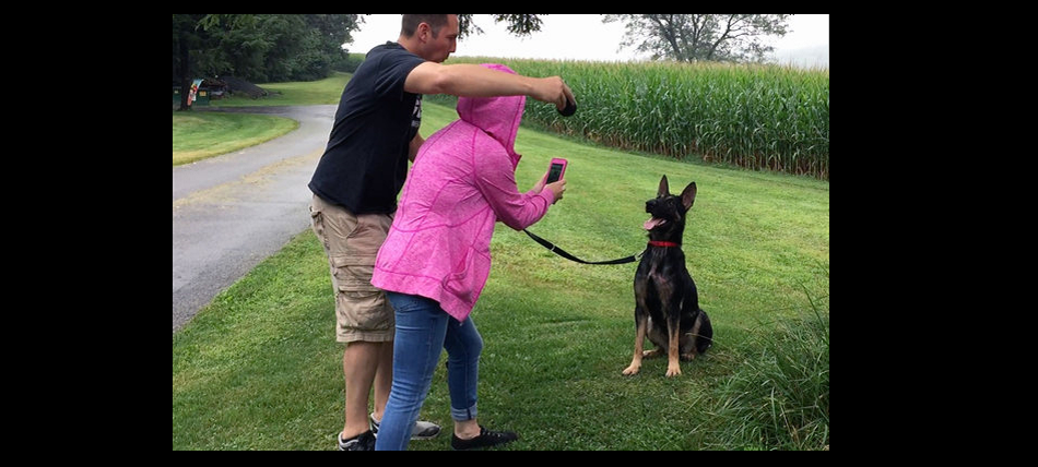 Carol Skaziak and Jason Walters, founders of Throw Away Dogs Project, evaluate Hope — a rescued stray later renamed Rousey, for her never-say-die spirit — to see if she might have what it takes to become a police dog. ROBERT MORAN / Inquirer Staff